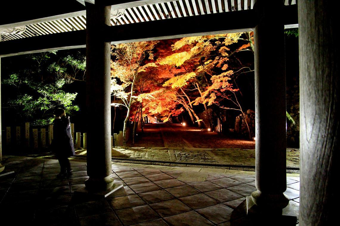 彦根城博物館見学  ~2012年湖東のお寺~ _a0107574_18360294.jpg