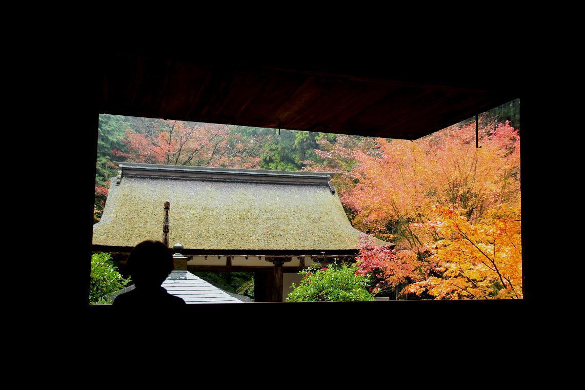 彦根城博物館見学  ~2012年湖東のお寺~ _a0107574_18361992.jpg