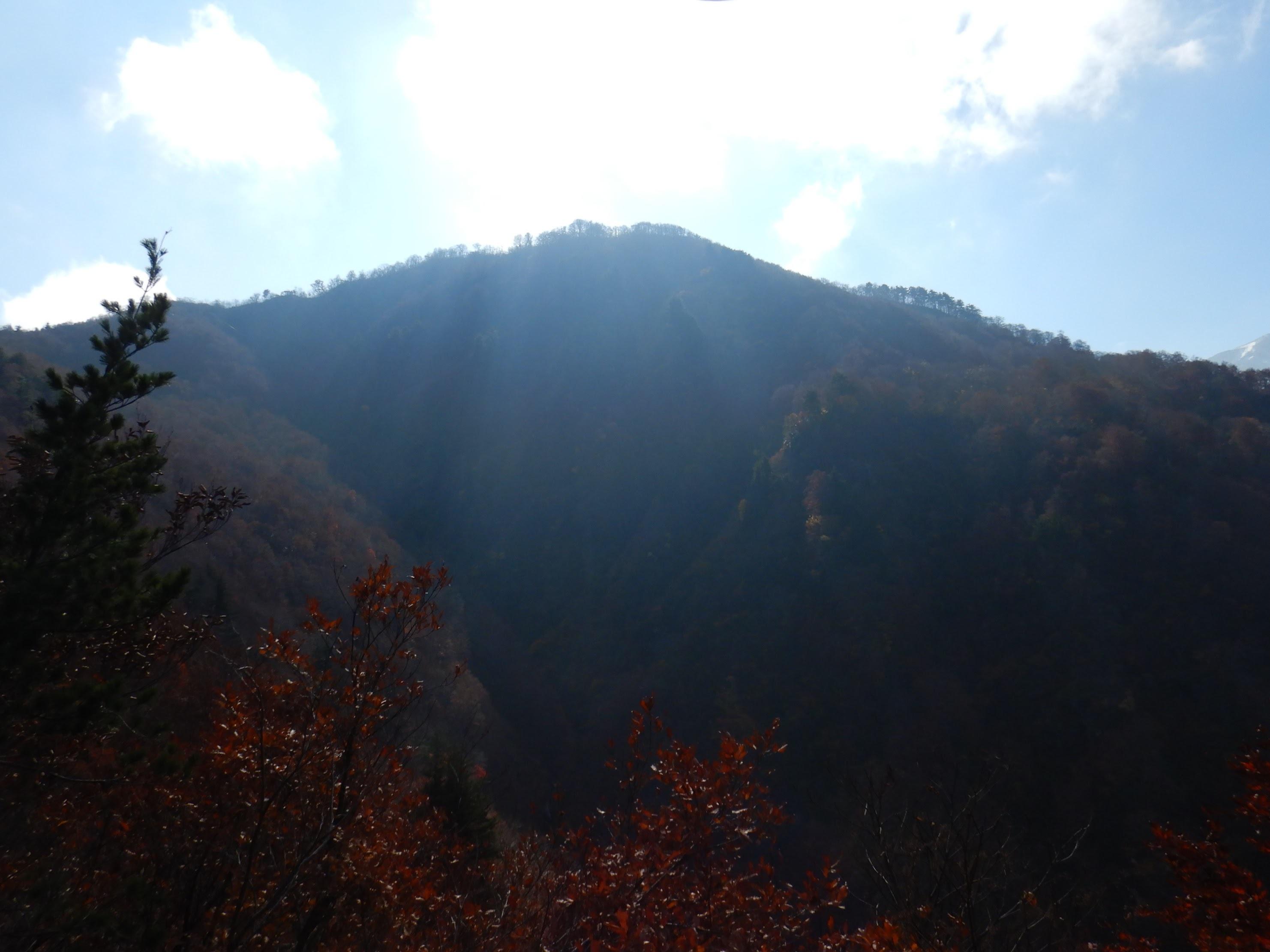 倉手山 ~ 2018年11月8日_f0170180_23471362.jpg
