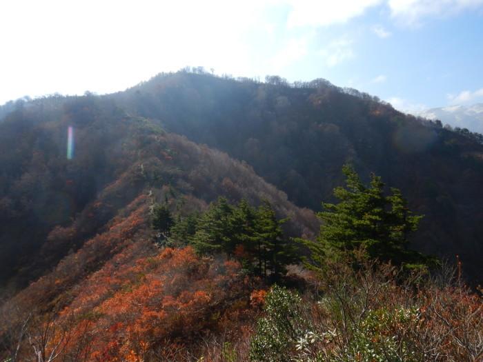 倉手山 ~ 2018年11月8日_f0170180_23542991.jpg