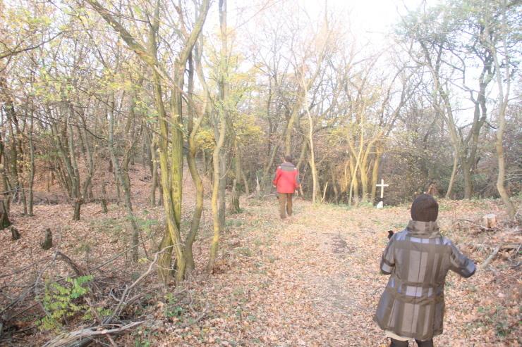 ベルセルの思い出 朝の散歩 防空壕_c0100195_23172961.jpg