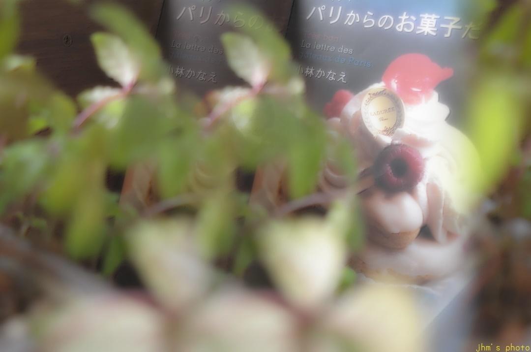 函館魅力度No.1は無い物ねだりの心理_a0158797_22133553.jpg
