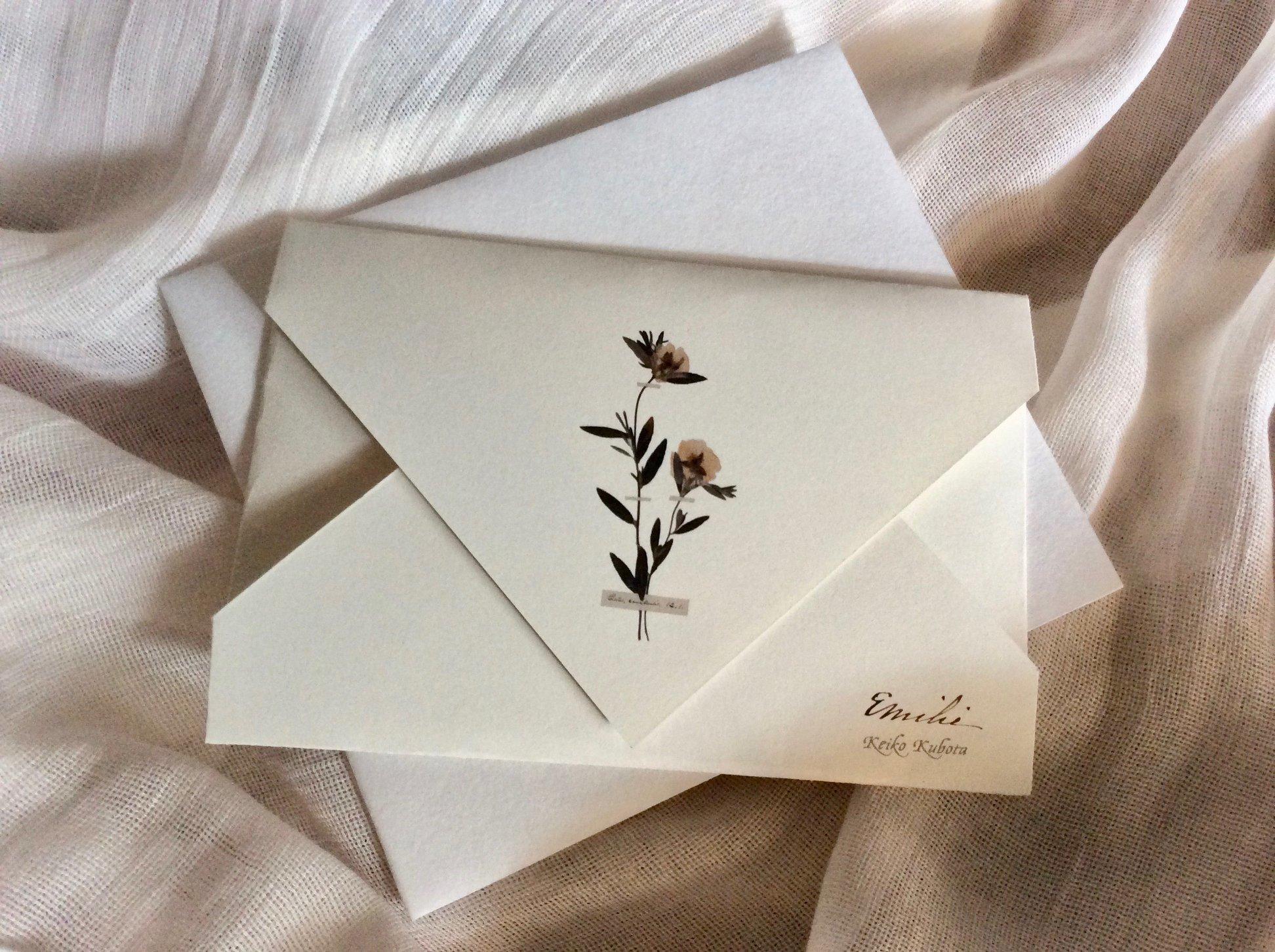 音楽という手紙 Emilie  ~ for Emily Dickinson ~_c0203401_14592028.jpg