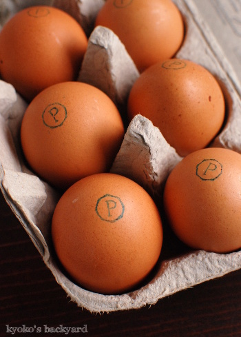 卵かけご飯を、専用のたれで_b0253205_08002658.jpg