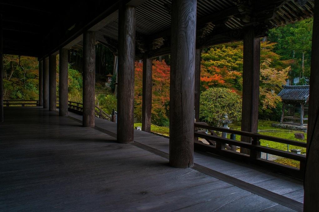2018京都紅葉~勝林院_e0363038_10173599.jpg