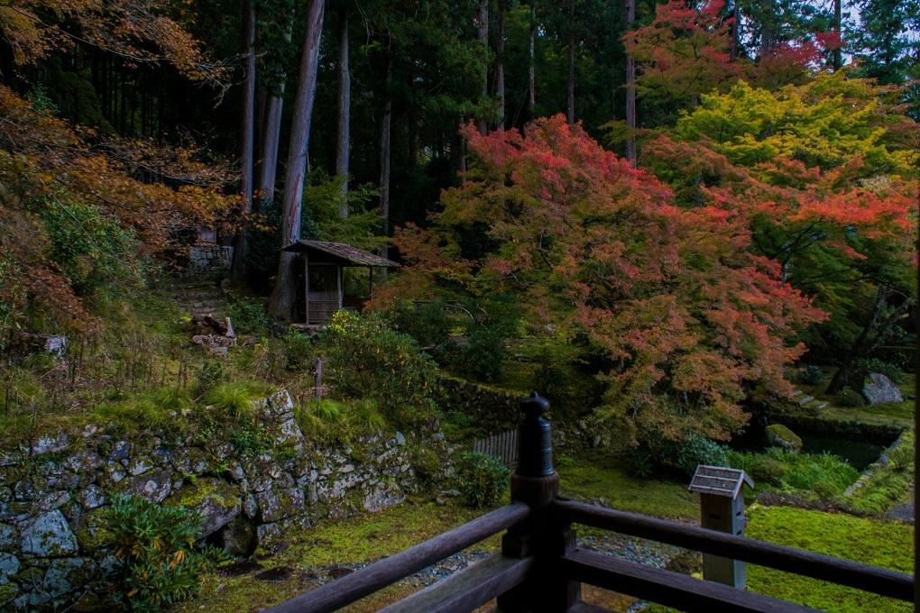 2018京都紅葉~勝林院_e0363038_10175484.jpg