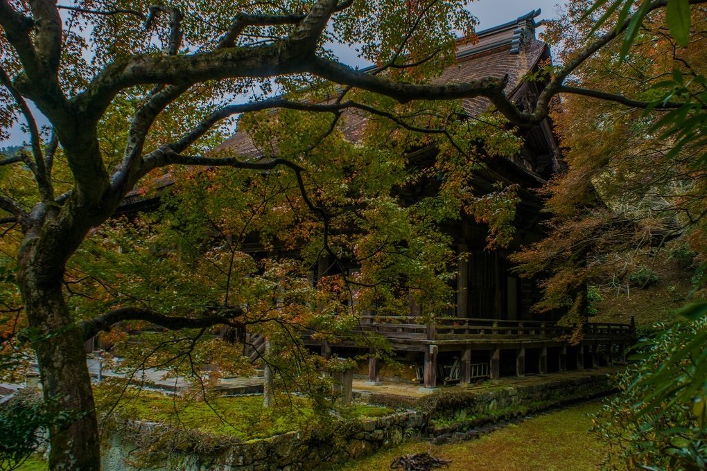 2018京都紅葉~勝林院_e0363038_10175883.jpg