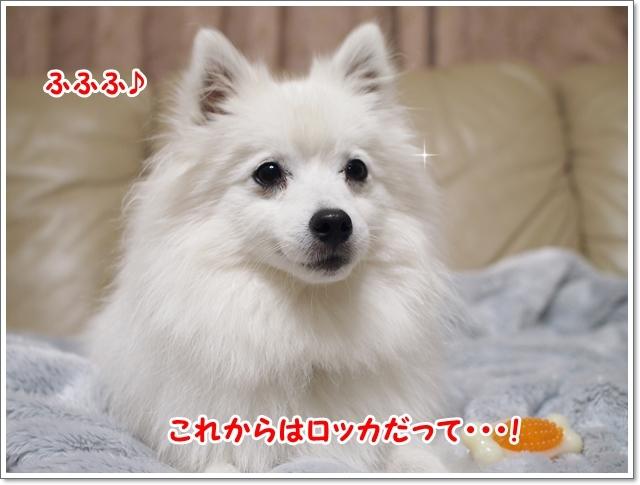 d0013149_00134916.jpg
