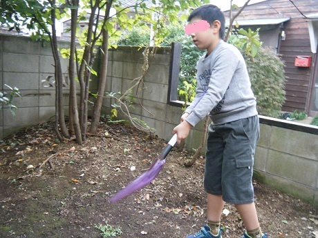 秋のお庭で虫探し_e0116086_10592900.jpg