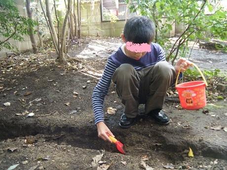 秋のお庭で虫探し_e0116086_11004530.jpg