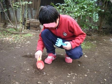 秋のお庭で虫探し_e0116086_11011858.jpg