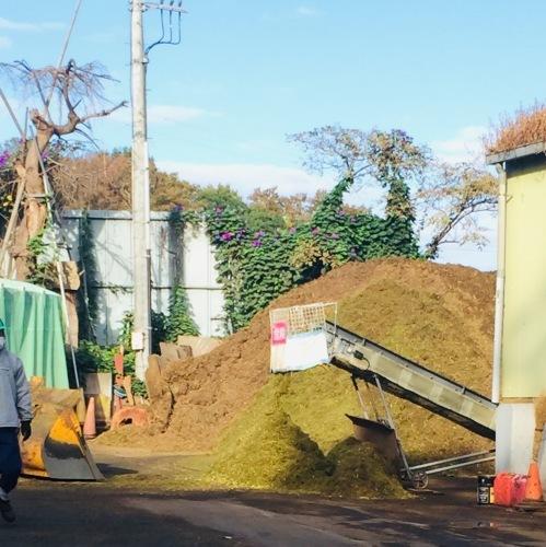 緑の再生工場に  枝を持ち込む_e0356016_10011024.jpeg