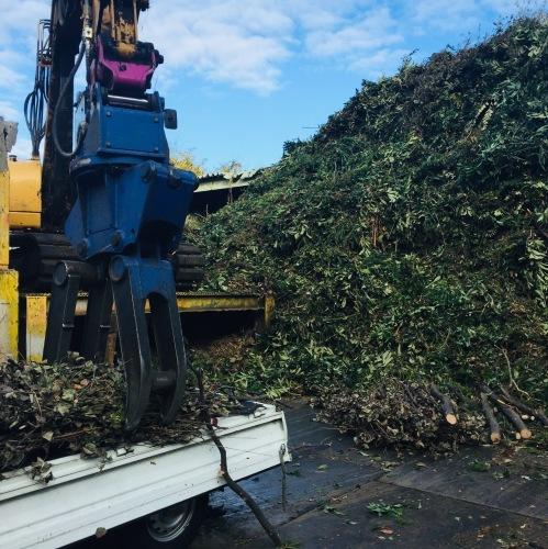 緑の再生工場に  枝を持ち込む_e0356016_10174369.jpeg