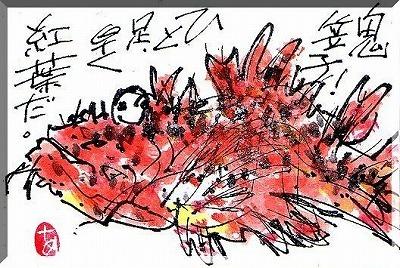 紅葉・・・・。_e0054438_18352655.jpg