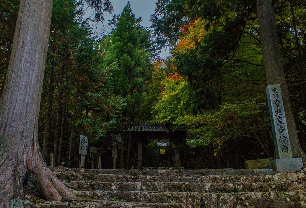 2018京都紅葉~常照皇寺_e0363038_19214847.jpg
