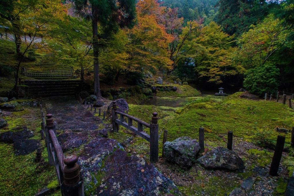 2018京都紅葉~常照皇寺_e0363038_19215878.jpg