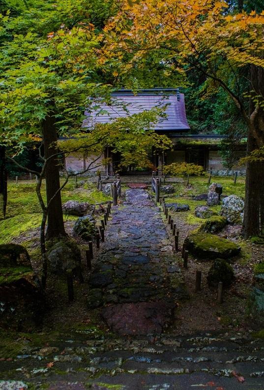 2018京都紅葉~常照皇寺_e0363038_19220850.jpg