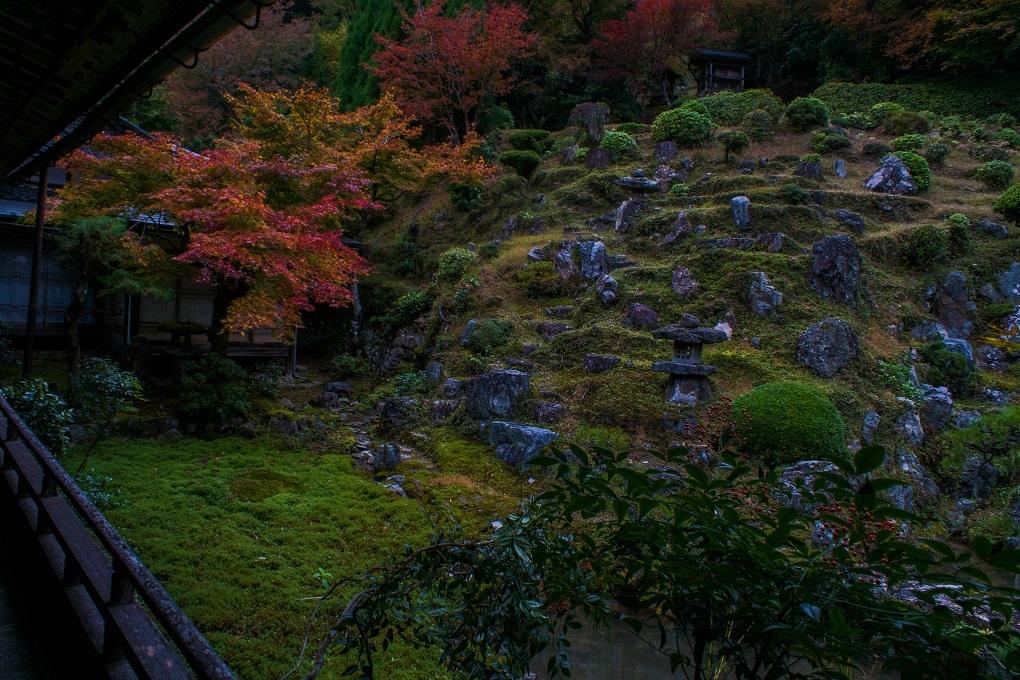 2018京都紅葉~常照皇寺_e0363038_19222751.jpg