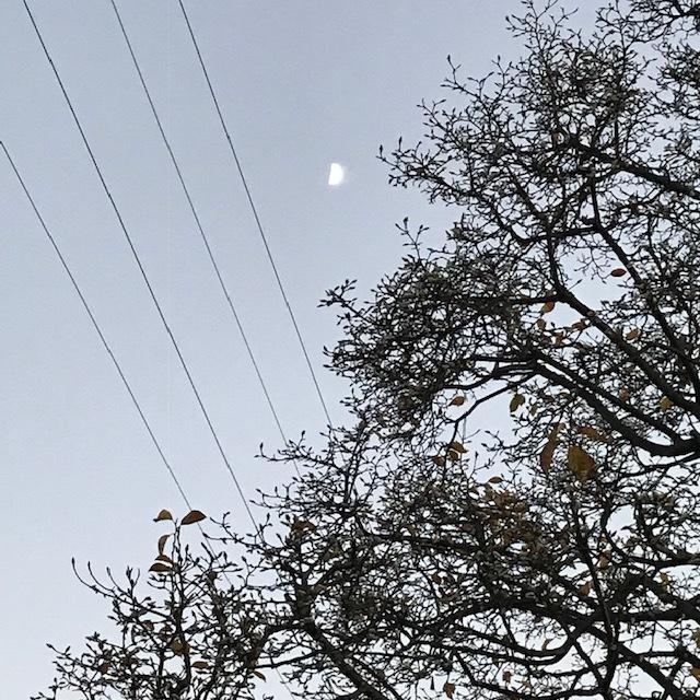 秋の夕_e0226943_23132618.jpg