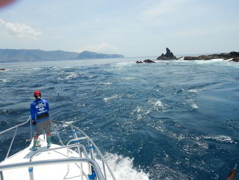コモド島GT遠征記3_f0175450_793050.jpg