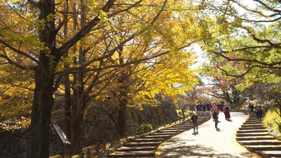 福岡城址の秋 Ⅰ_b0214473_1961753.jpg