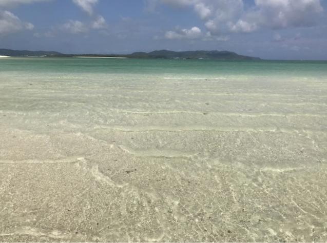 今週末は、いよいよ〝シュガーライド久米島〟ですね‼️_e0363689_12044824.jpg