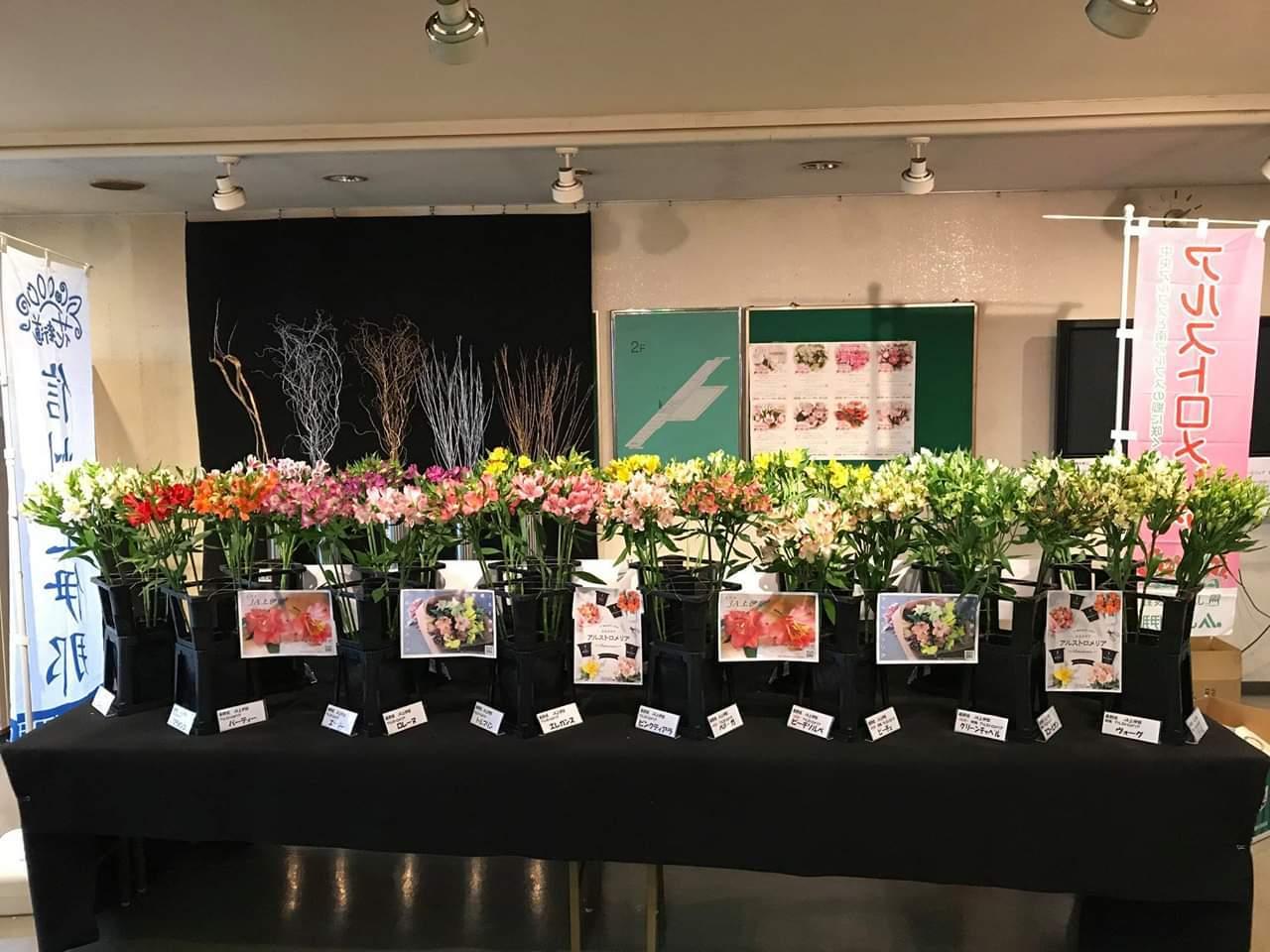 アルストロメリア品種展示 in 西日本花きさま_d0062298_20465914.jpg
