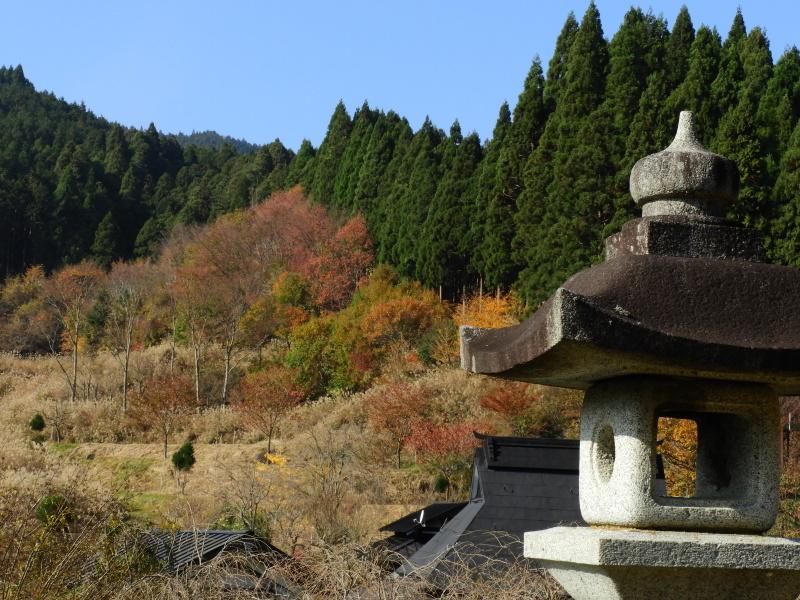 北山 秋の盛り_e0048413_20285486.jpg
