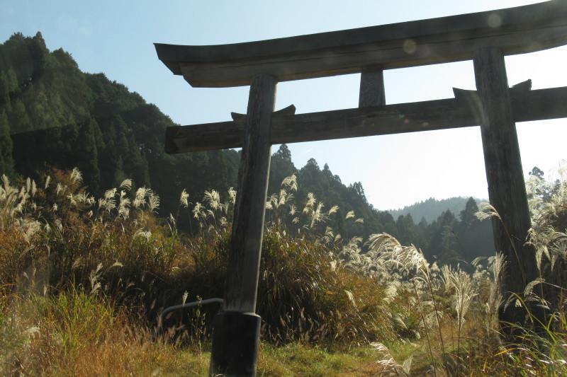 北山 秋の盛り_e0048413_20290997.jpg