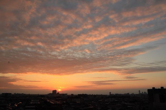 夕日に照らされる層状雲(層積雲)_b0268615_11351785.jpg