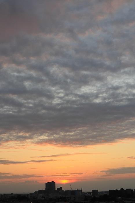 夕日に照らされる層状雲(層積雲)_b0268615_11353833.jpg