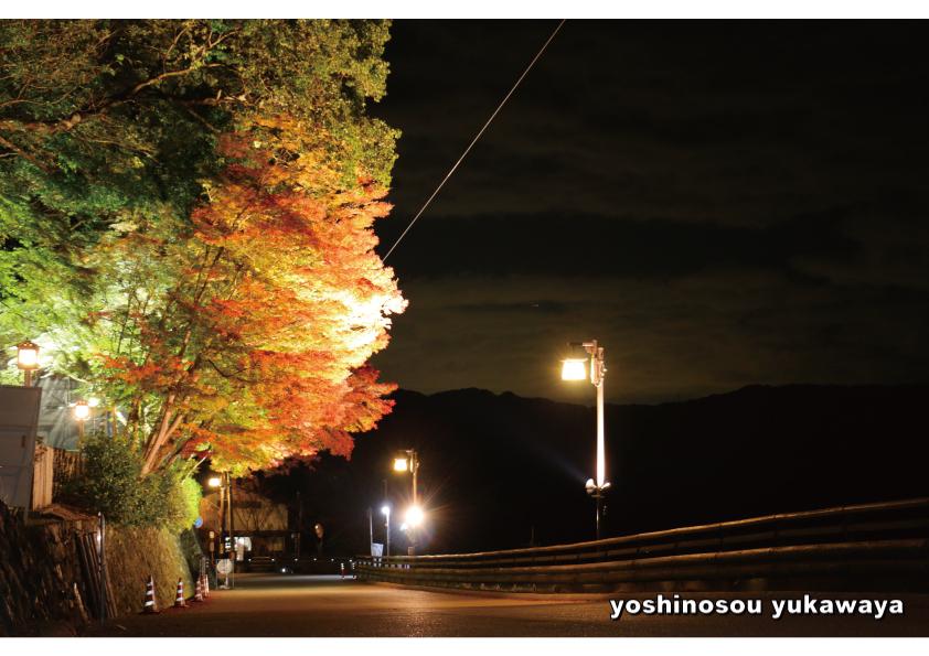 吉野山 紅葉情報とライトアップ…綺麗になってきました!!_e0154524_19415167.jpg