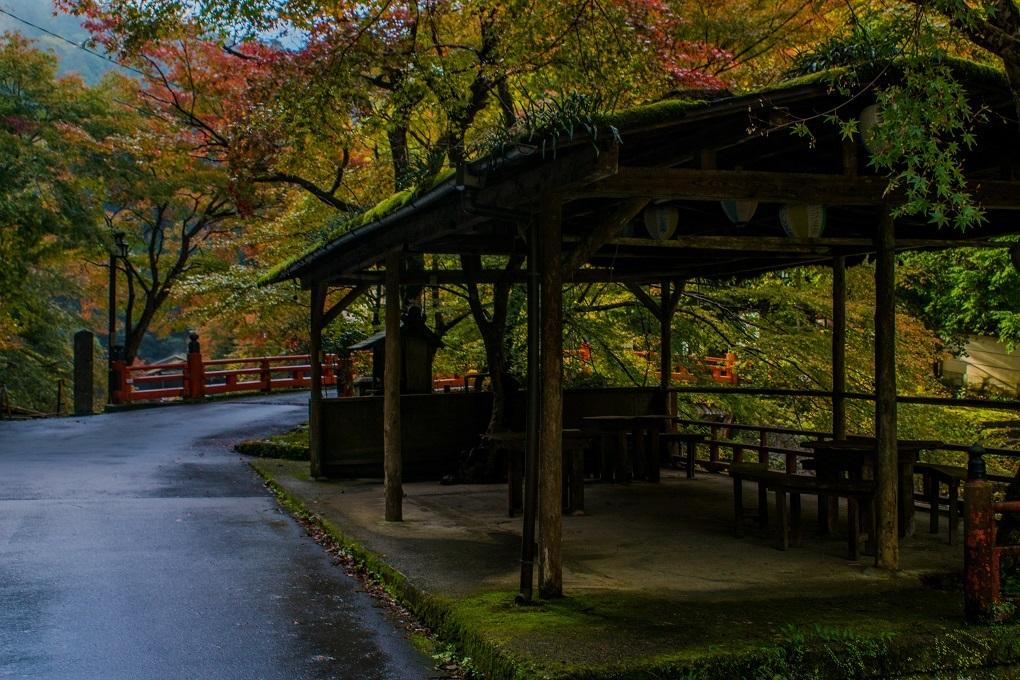 2018京都紅葉~神護寺_e0363038_14052454.jpg