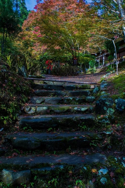2018京都紅葉~神護寺_e0363038_14053667.jpg