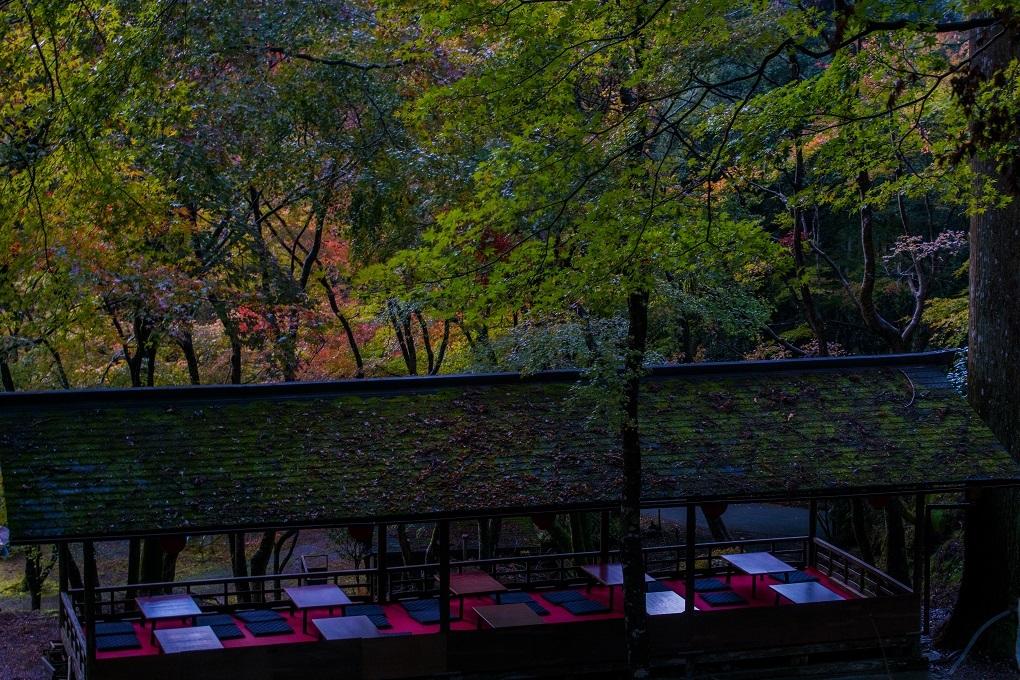 2018京都紅葉~神護寺_e0363038_14054045.jpg