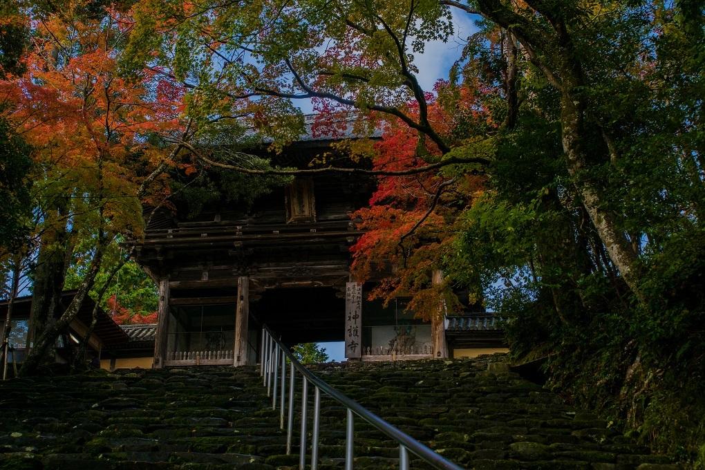 2018京都紅葉~神護寺_e0363038_14054437.jpg
