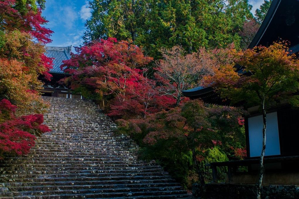 2018京都紅葉~神護寺_e0363038_14055766.jpg