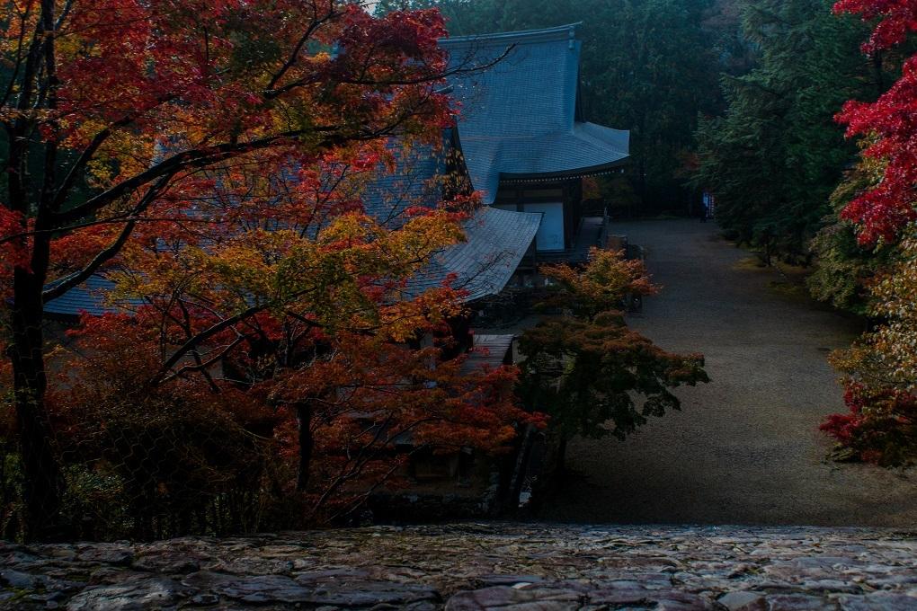 2018京都紅葉~神護寺_e0363038_14060075.jpg
