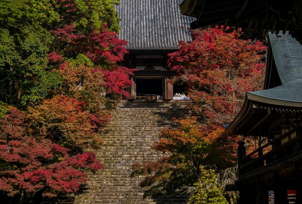 2018京都紅葉~神護寺_e0363038_14060522.jpg