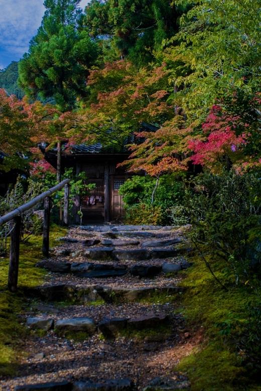 2018京都紅葉~神護寺_e0363038_14060999.jpg