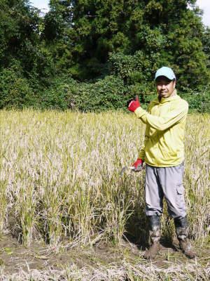 第6回菊池米食味コンクール 明日(11/17)は第2回九州のお米食味コンクールin菊池が開催されます!!_a0254656_19223363.jpg