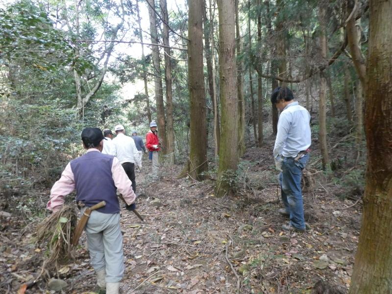 枯れ松大木の伐採・・・孝子の森_c0108460_21381455.jpg