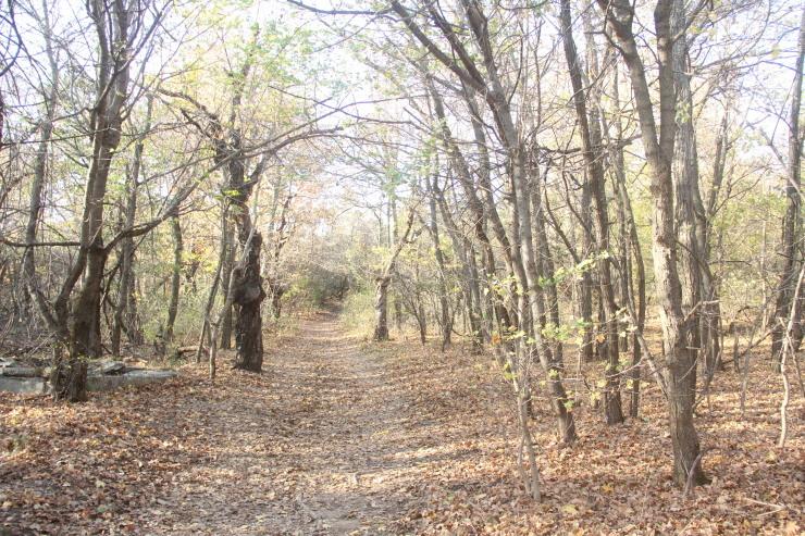 ブタペストでお散歩_c0100195_15034389.jpg