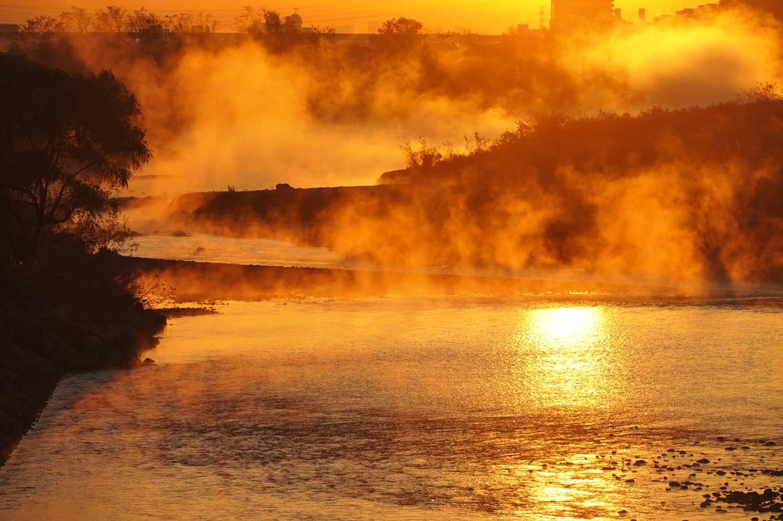 多摩川の川霧_f0173596_09430492.jpg