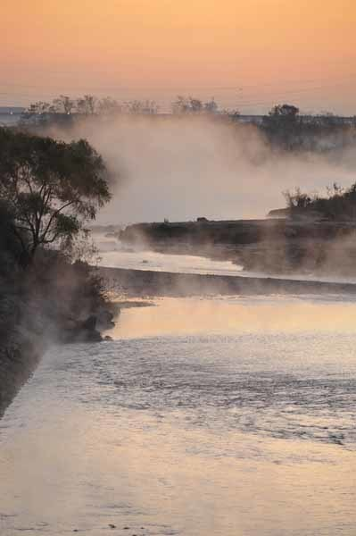 多摩川の川霧_f0173596_09432661.jpg