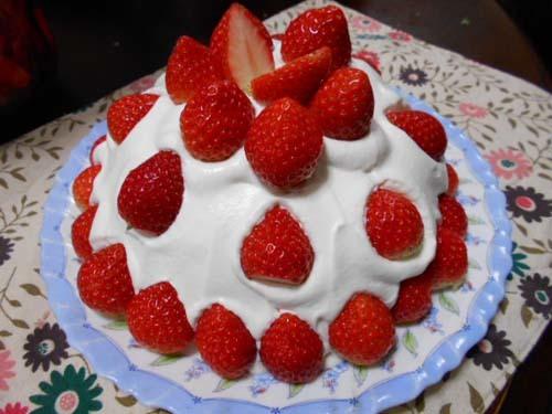 いちごのドームケーキ_f0019498_18400771.jpg