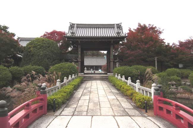 妙満寺 紅葉の始まり_e0048413_19452914.jpg