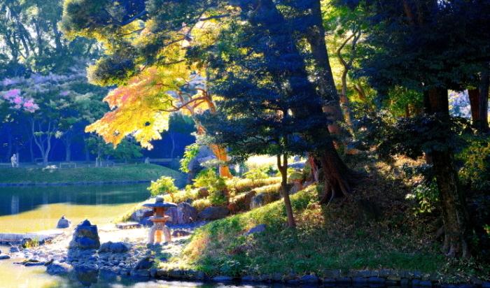 小石川後楽園に紅葉を観に行ったが未だ早かった_a0150260_00004361.jpg