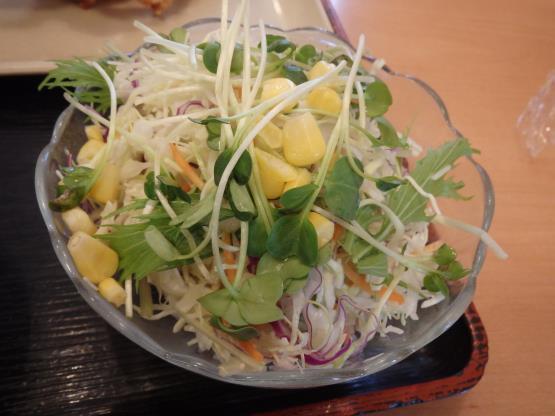 讃岐製麺         箕面半町店_c0118393_11112024.jpg