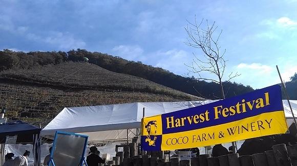 ワイナリーの収穫祭_c0037814_22321227.jpg